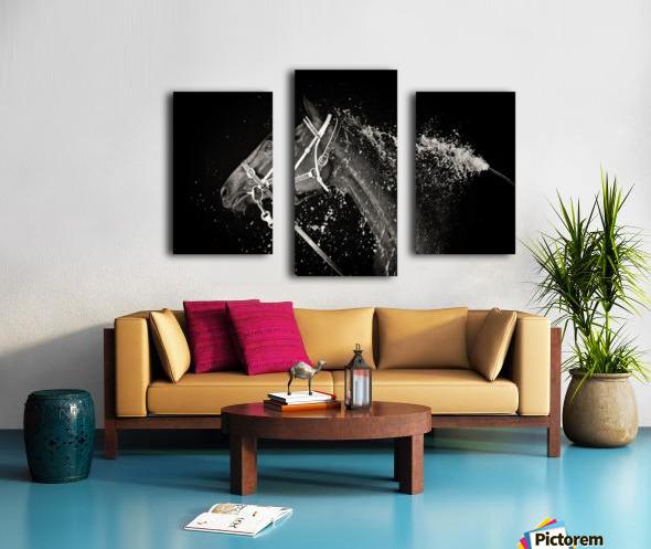 The Hose Down Canvas print