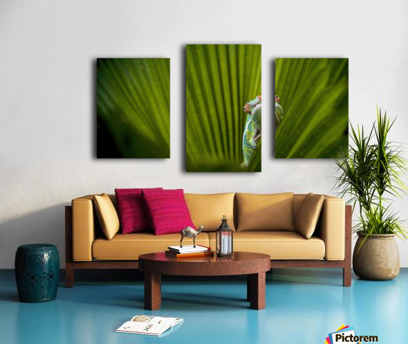 What Is That Canvas print