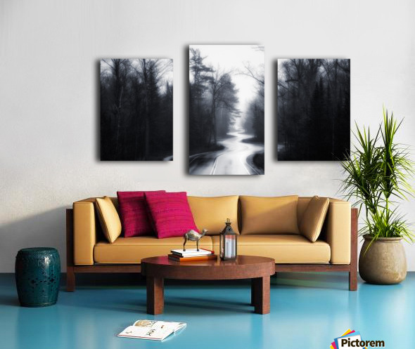 Slalom Canvas print