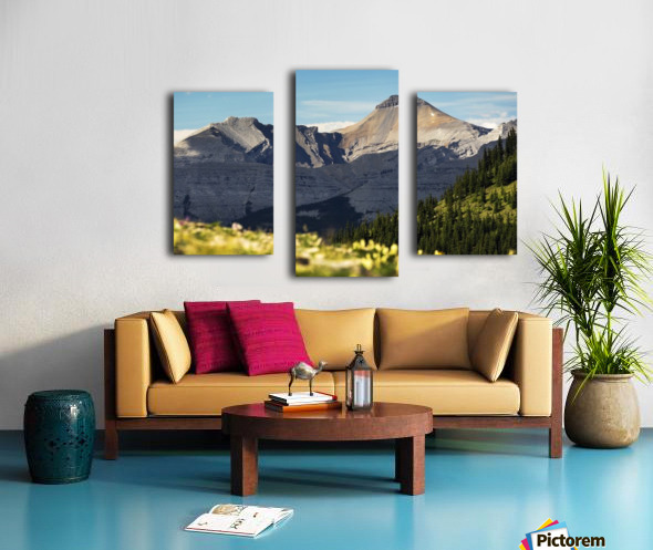 Mountain range with wildflowers on hillside in the foreground and blue sky; Bragg Creek, Alberta, Canada Canvas print