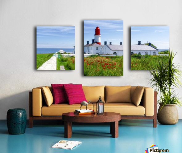 Souter Lighthouse with a field of red poppies in the foreground; South Shields, Tyne and Wear, England Canvas print