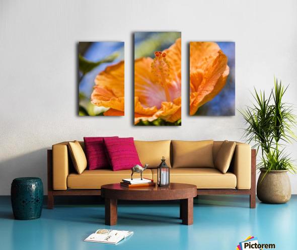 Close-up of orange hibiscus flower; Maui, Hawaii, United States of America Canvas print