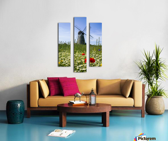 A windmill against a blue sky and cloud with a field of wildflowers in the foreground; Whitburn, Tyne and Wear, England Canvas print