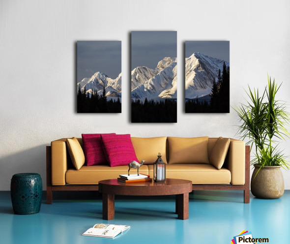 Snow covered mountains with early morning light, silhouetted forest in the foreground, blue sky and clouds; Kananaskis Country, Alberta, Canada Canvas print