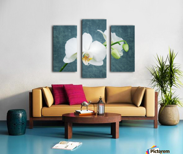 Zen White Orchid Canvas print