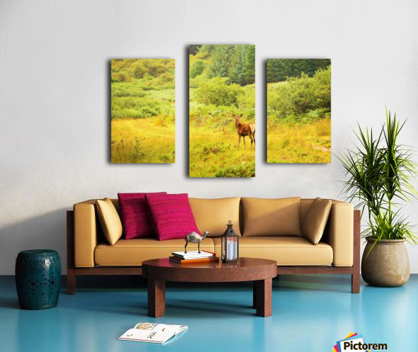 Caught in the open Canvas print