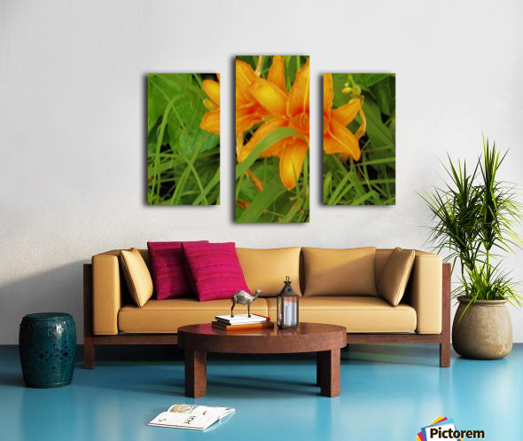Oranger Lilly 2 Canvas print