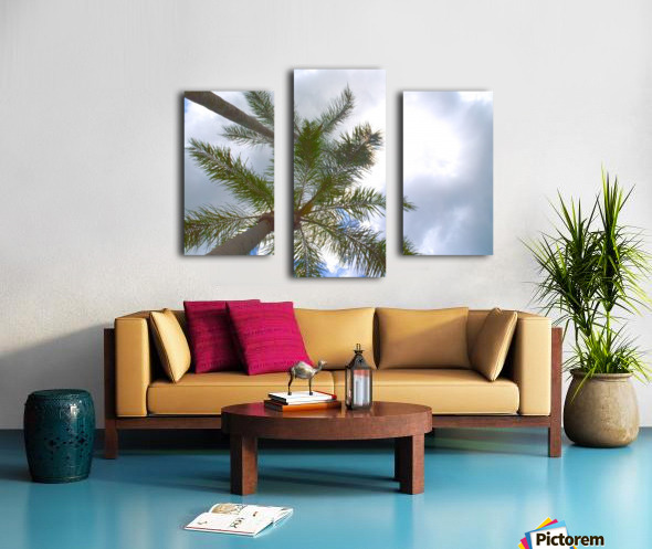 HDR Palm trees looking up against a cloudy sky Canvas print