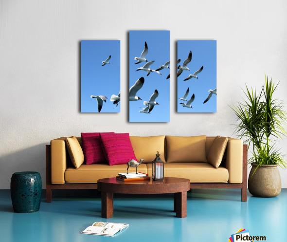 Seagulls against a clear blue sky Canvas print