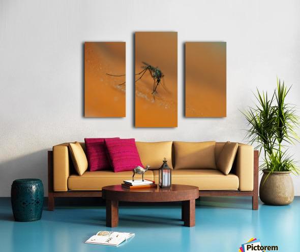 Mosquito! Canvas print