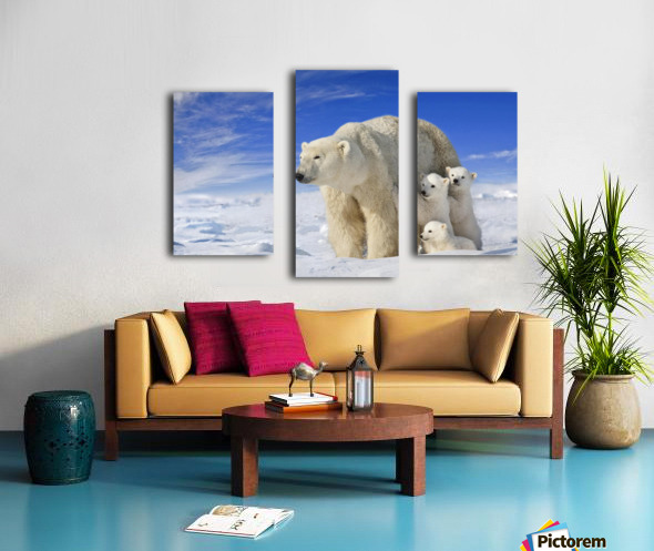 View Of Polar Bear Sow (Ursus Maritimus) With Her Triplet Cubs On The Wind Swept Plains Of Wapusk National Park, Manitoba, Canada, Winter, Composite Canvas print