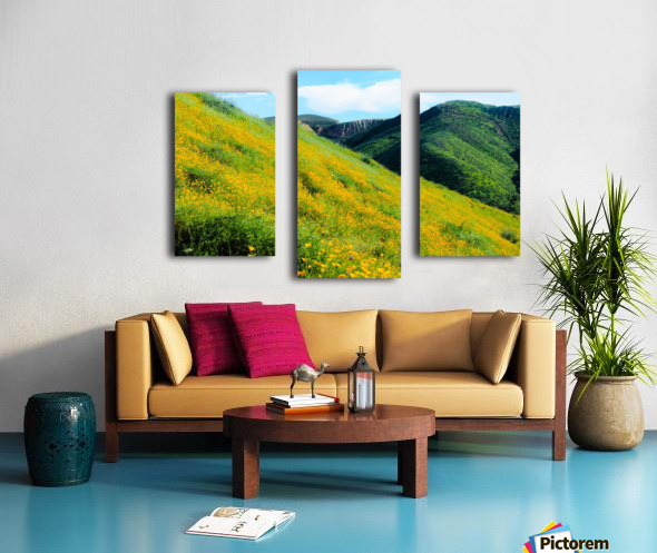 yellow poppy flower field with green leaf and green mountain and cloudy blue sky in summer Canvas print