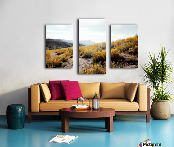 vintage style yellow poppy flower field with summer sunlight Canvas print