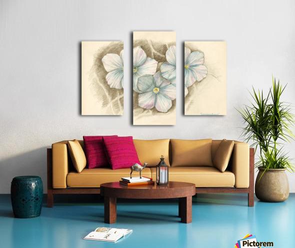 Linum Narbonense Canvas print