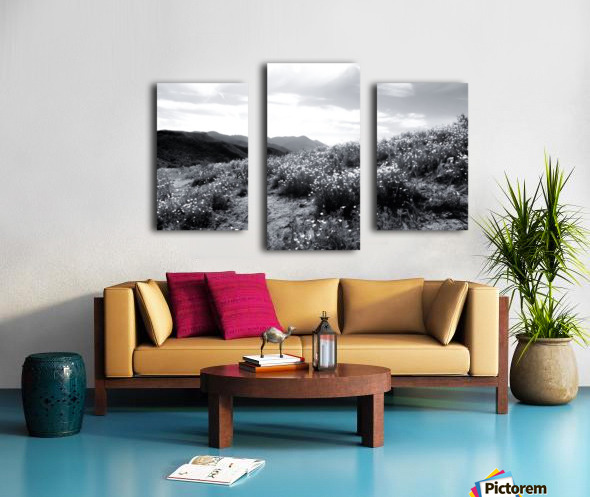 poppy flower field with mountain and cloudy sky in black and white Canvas print