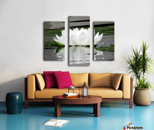 FloweringLilyPad Canvas print