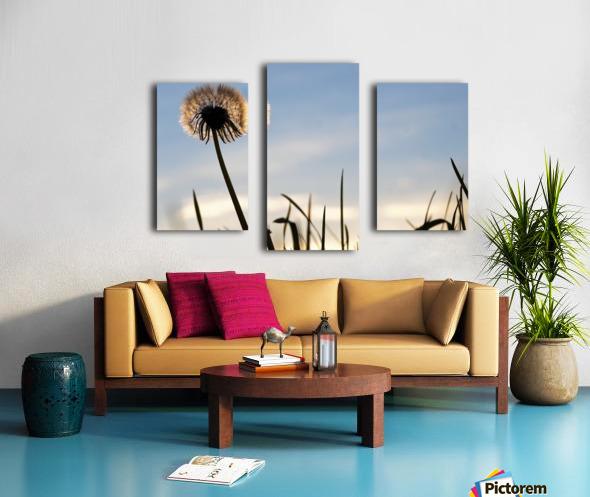Dandelion Impression sur toile