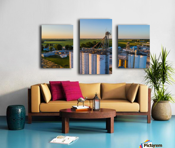 Schuyler County, IL FS Towers Canvas print
