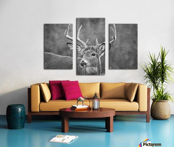 Stud Canvas print