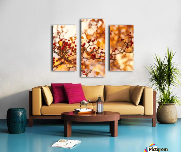 Winterberries in golden light Canvas print