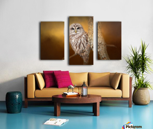 Seen Canvas print