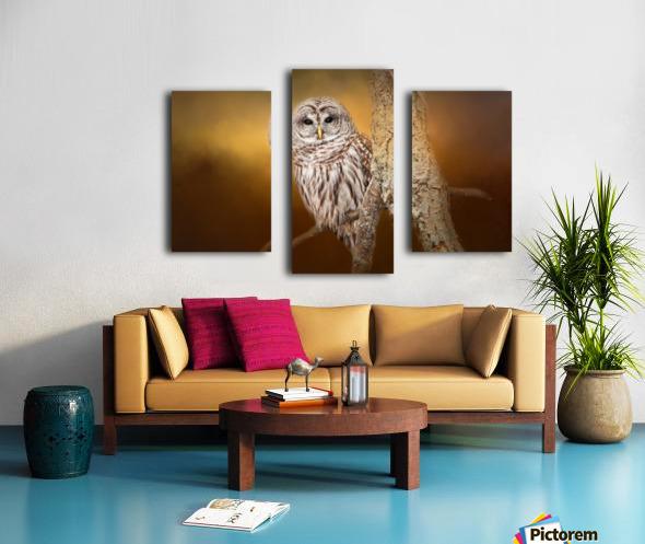 Seen Canvas print