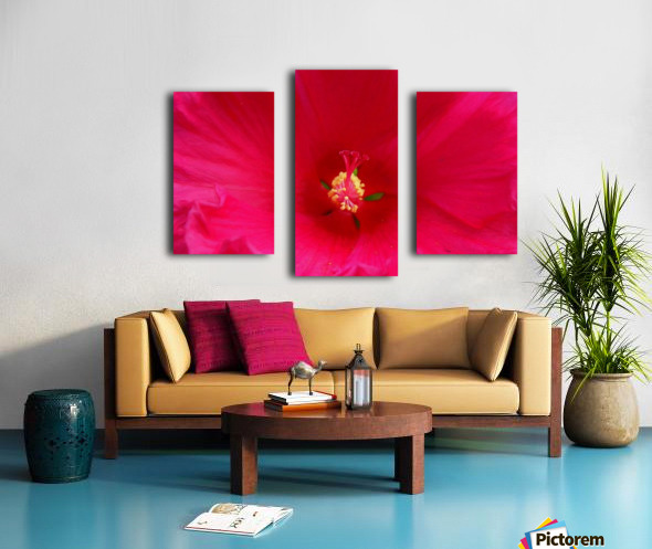 Pistil painted Canvas print