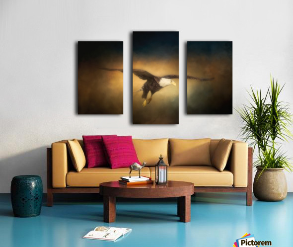 High Altitude Canvas print