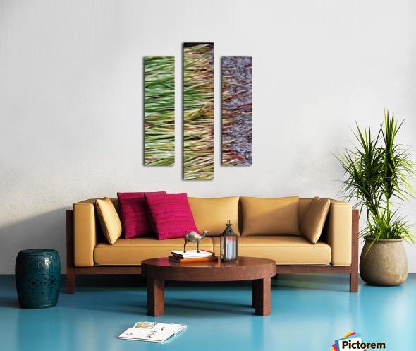 Cut Grass and Pebbles Canvas print
