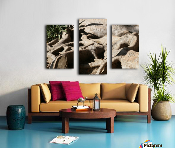 Signed Tree Roots Canvas print