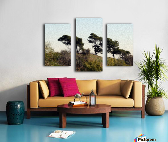 Natural Wind Blown Trees Canvas print