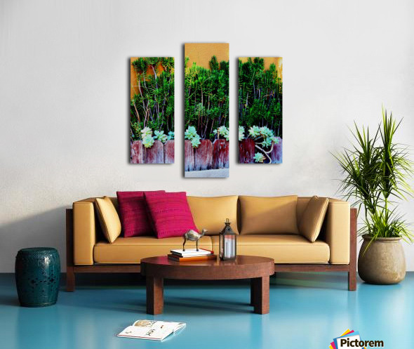 Wall of Succulents Canvas print