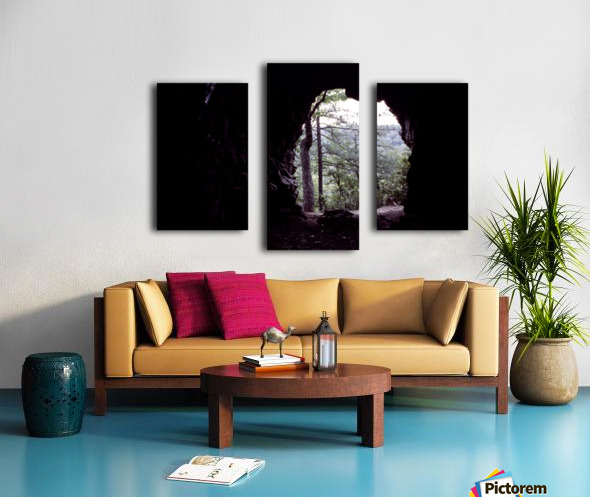 Forest Cave Canvas print