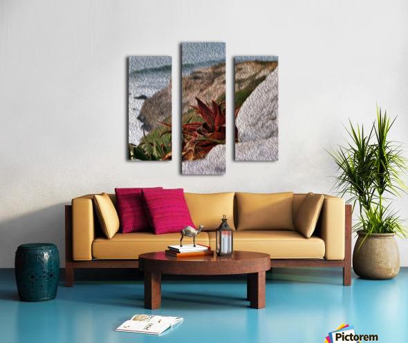 Coastal Red Aloe Vera  Canvas print