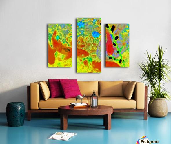 photo Koi Series  2 16 Canvas print