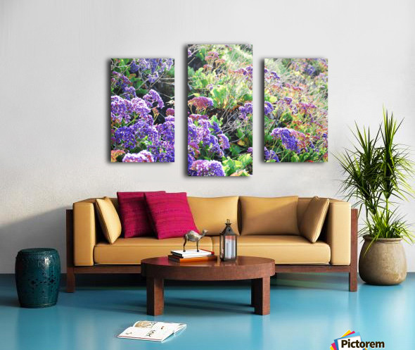 Purple Wild Flowers in Dana Point CA Canvas print