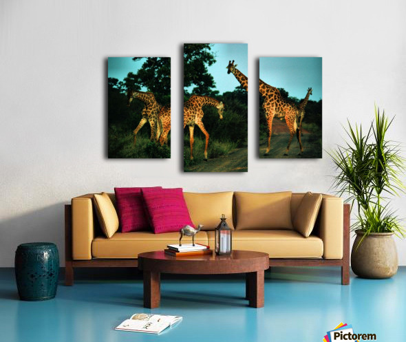 Giraffes at sundown 2 Canvas print
