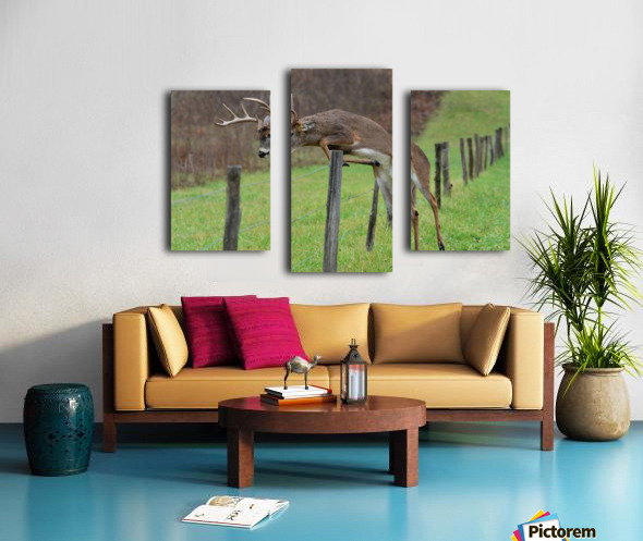 14_1518721195.51 Canvas print
