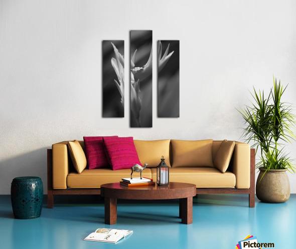 Claw Canvas print