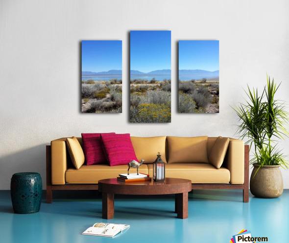Salt Lake Vista Canvas print