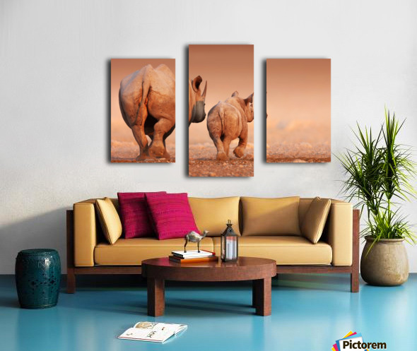 Black Rhinoceros calf and cow walking away Canvas print