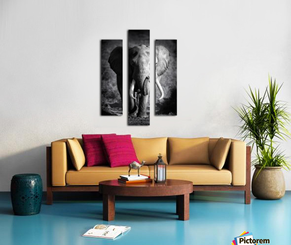 Elephant Bull Canvas print