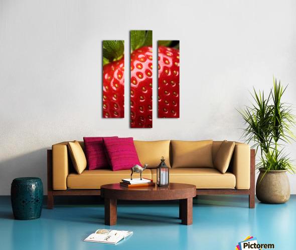 Fresh strawberry close-up Canvas print