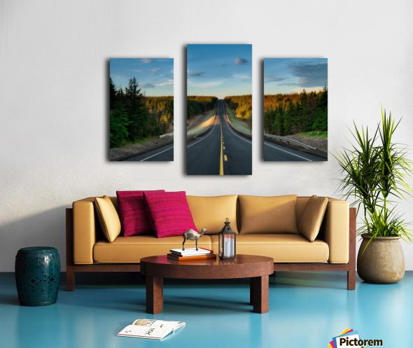Passing Through Canvas print