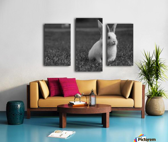 Lovely Rabbit Canvas print