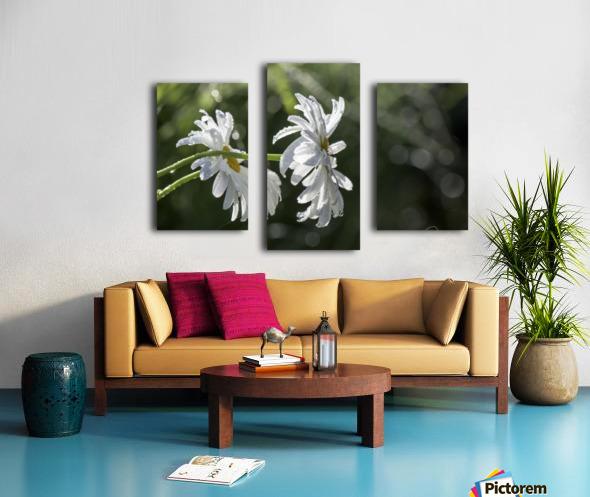Soeurs jumelles Canvas print