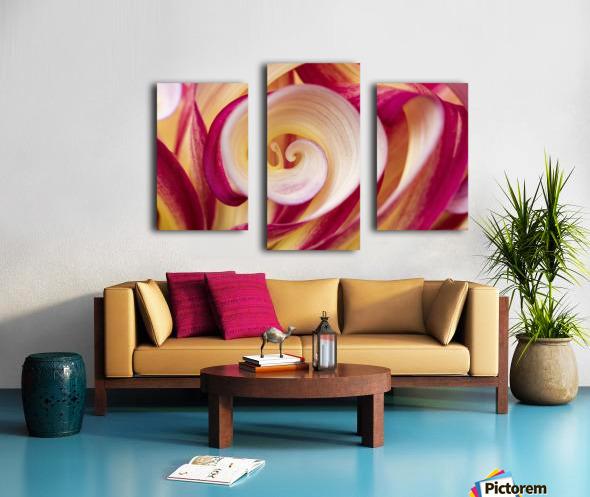 Spirales Canvas print