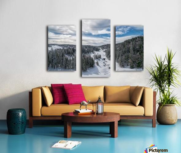 A Boreal Winter Canvas print