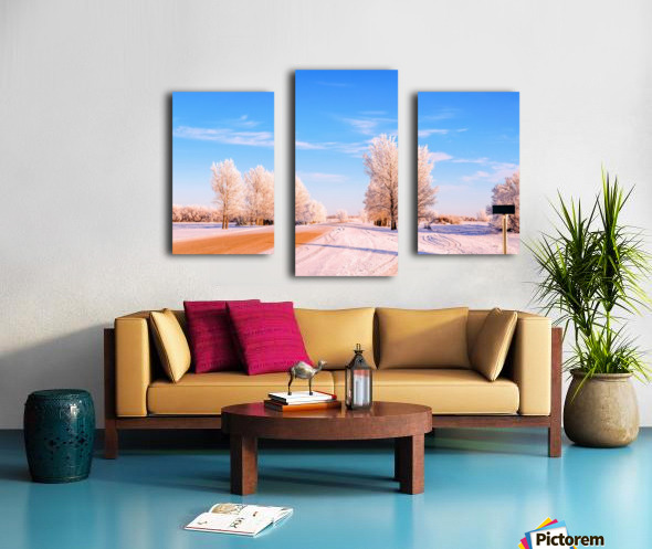 Beautiful, colorful and cold winter with snow and frost Canvas print