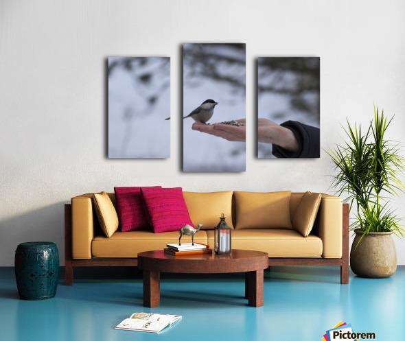 A bird on the hand Canvas print
